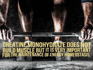 Creatine Monohydrate picture