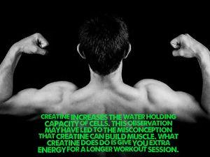 Creatine water osmosis